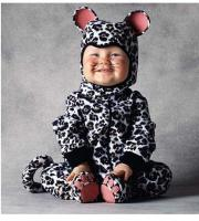 baby cat custome picture.jpg