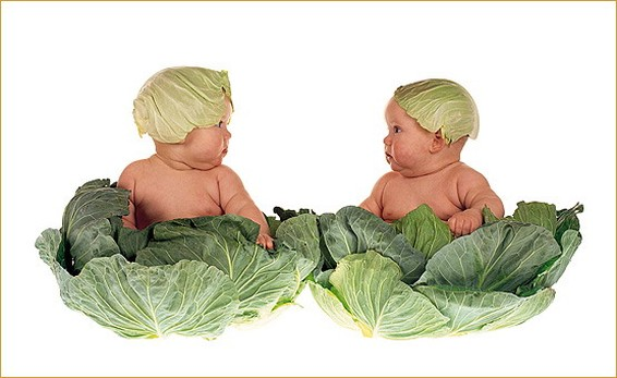 babies in green cabbage customes.jpg