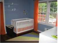Baby boy nursery pictures.PNG