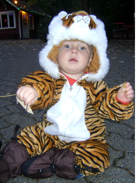 Baby tiger costume images.PNG