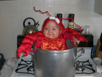 In pot lobster baby costume for halloween.PNG