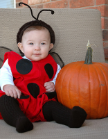 Pretty ladybud halloween costume for baby.PNG