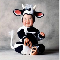 Very cute cow baby costume pictures.PNG