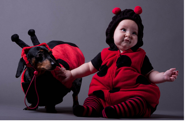 Adorable ladybug baby costume with the dog.PNG