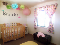 Beautiful and cute baby pictures of nursery_baby girl nursery.PNG