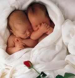 two cute newborn babies photo.jpg