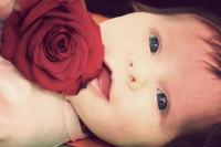 beautiful baby girl picture holding a red rose.jpg