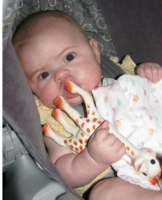 I love my Vulli Sophie teether.PNG