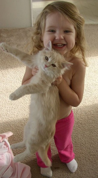 cute toddler gir holding her cat in the air.jpg