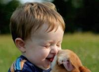 cute toddler playing with his small dog that is about to bit his nose.jpg