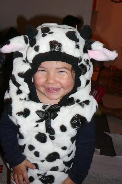 Cute baby toddler girl in a cow costume.jpg  sc 1 st  Cute Baby Pictures u0026 Nursery Photos Gallery & Cute baby toddler girl in a cow costume.jpg Hi-Res 720p HD