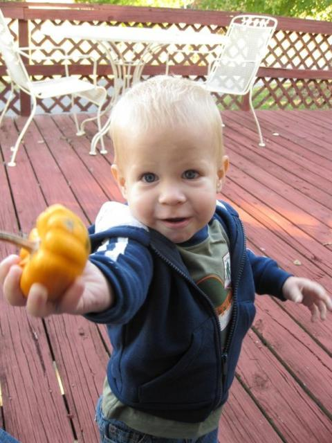 toddler giving out the squash.jpg