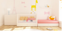 Pretty nursery idea for baby girl.PNG