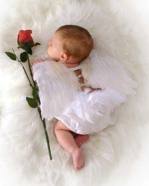 angle baby picture with a red rose.jpg