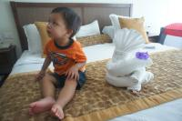Darwin sits next to towel animal on bed at Gran Bahia Principe Sian Kaan.jpg
