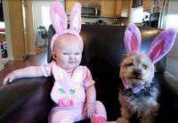 Funny baby and dog in adorable rabbit outfit.JPG