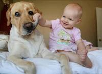 Funny baby and dog picture.JPG