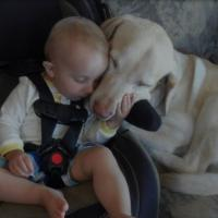 Baby and dog love looking so cute together.JPG