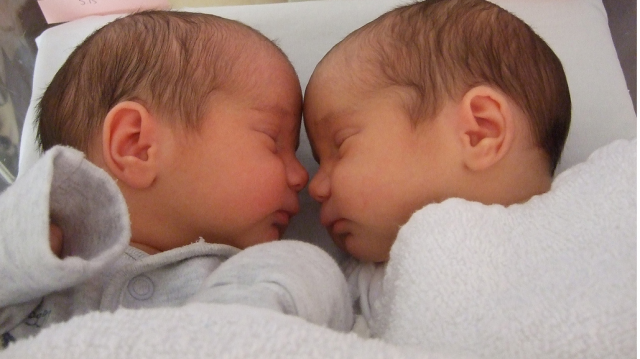 Close up picture of newborn twins sleeping png